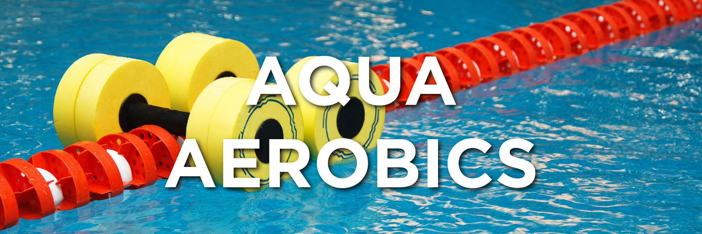 Aqua Aerobics Web Strip-03