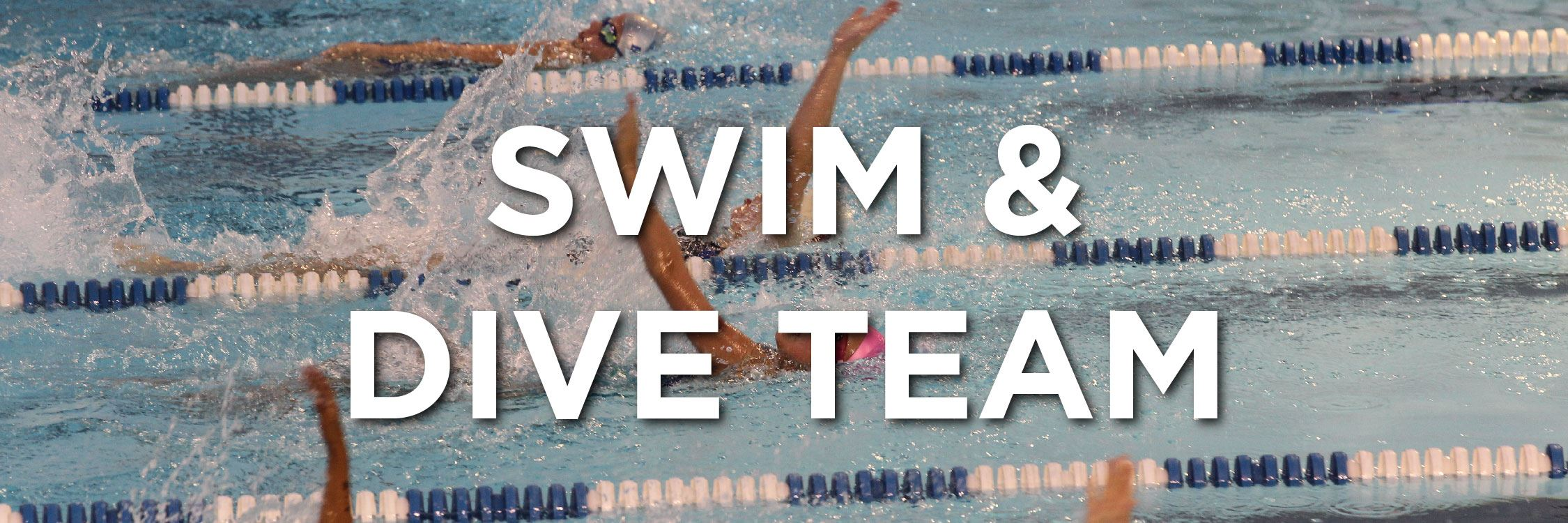 Swim and Dive Team Web Strip-01