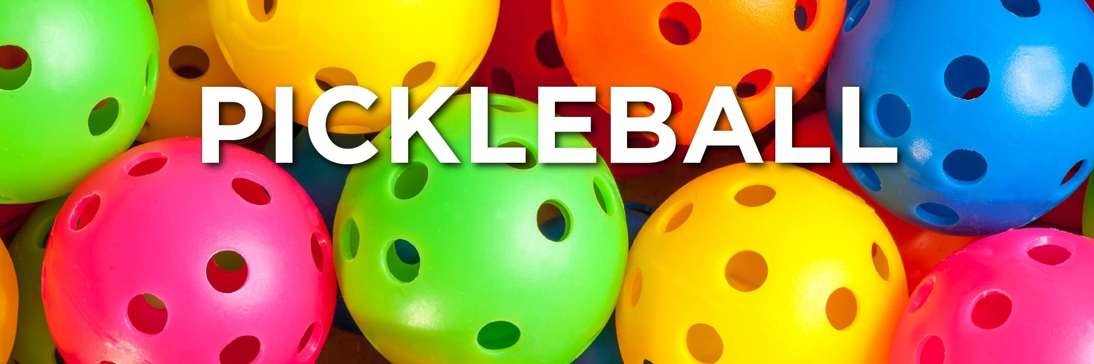 Pickleball Web Strip-05